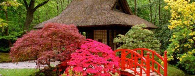Stunning japanese garden ideas plants you will love 30