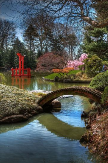 Stunning japanese garden ideas plants you will love 31
