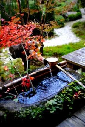Stunning japanese garden ideas plants you will love 48