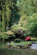 Stunning japanese garden ideas plants you will love 56