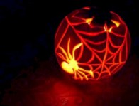Creative diy halloween decorations using spider web 11