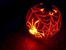 Creative diy halloween decorations using spider web 11