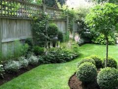 Diy backyard privacy fence ideas on a budget (2)