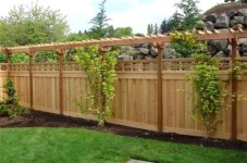 Diy backyard privacy fence ideas on a budget (37)