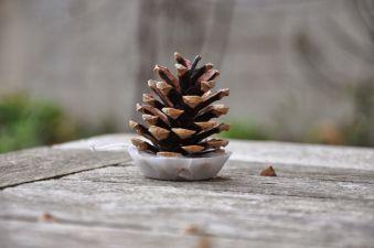 Ideas how to make minimalist christmas décoration 43
