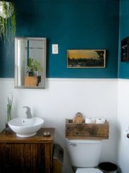 Paint color bathroom ideas for teens (4)