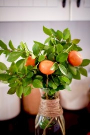 Easy christmas fruit tree centerpieces ideas 26