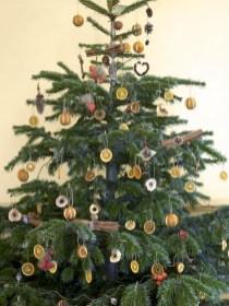 Easy christmas fruit tree centerpieces ideas 33