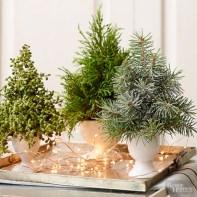 Minimalist christmas coffee table centerpiece ideas 14