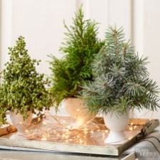 Minimalist christmas coffee table centerpiece ideas 14