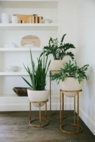 Stunning indoor plants ideas for your living room and bedroom 02