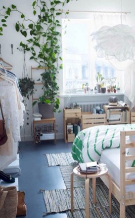 Stunning indoor plants ideas for your living room and bedroom 32