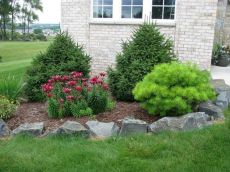 Beautiful rock garden landscaping ideas 19