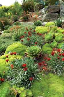 Beautiful rock garden landscaping ideas 35