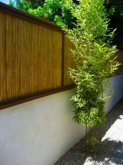 Easy and cheap backyard privacy fence design ideas 07