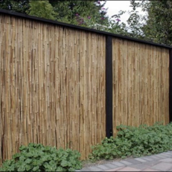44 Easy And Cheap Backyard Privacy Fence Design Ideas