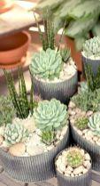 Creative diy indoor succulent garden ideas (13)