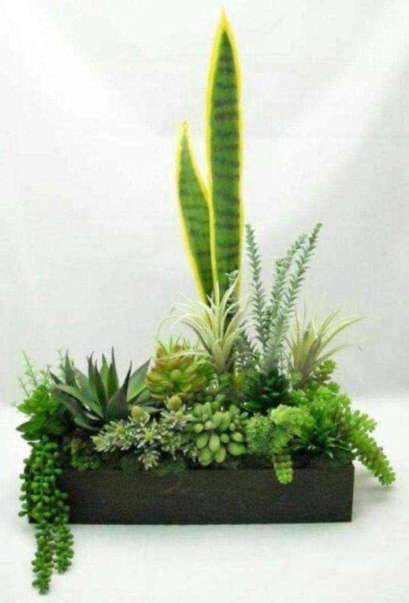 Creative diy indoor succulent garden ideas (14)