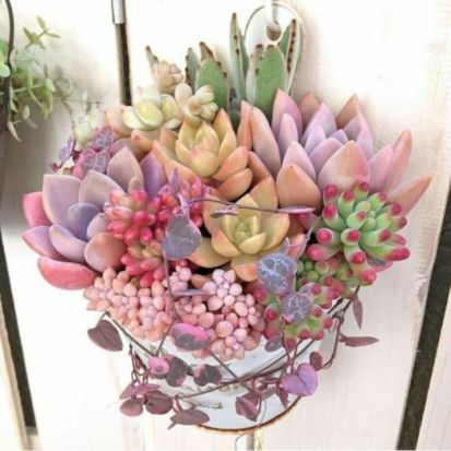 Creative diy indoor succulent garden ideas (21)