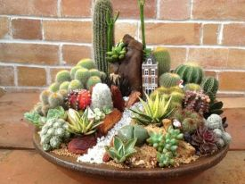 Creative diy indoor succulent garden ideas (33)