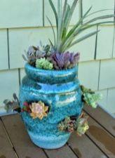 Creative diy indoor succulent garden ideas (36)