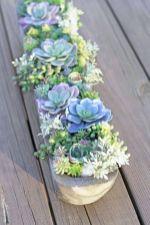 Creative diy indoor succulent garden ideas (39)