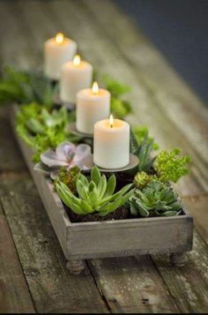 Creative diy indoor succulent garden ideas (44)