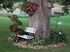 Best and beautiful tree ring planter ideas 41