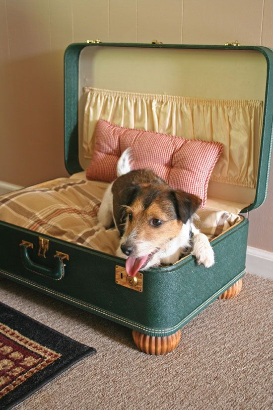 Admirable diy pet bed 10
