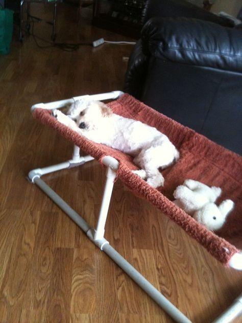 Admirable diy pet bed 26