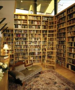 Delightful home libraries perfect book collection 23