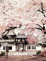 Stunning breathtaking temples around the world 37