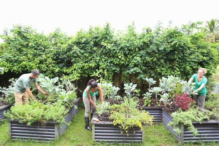 Elegant raised garden design ideas to inspire you 12