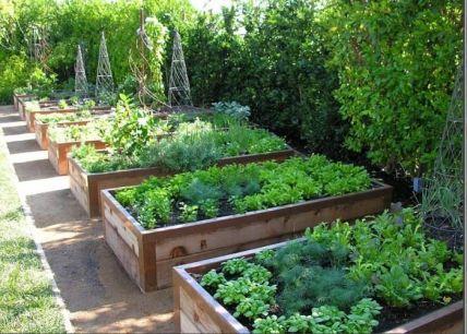 Elegant raised garden design ideas to inspire you 19