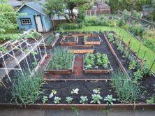 Elegant raised garden design ideas to inspire you 30