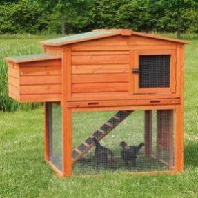 Extraordinary chicken coop decor ideas 05