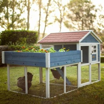 Extraordinary chicken coop decor ideas 12