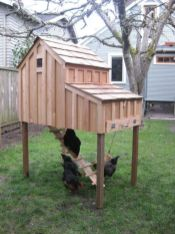 Extraordinary chicken coop decor ideas 15