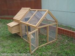 Extraordinary chicken coop decor ideas 31