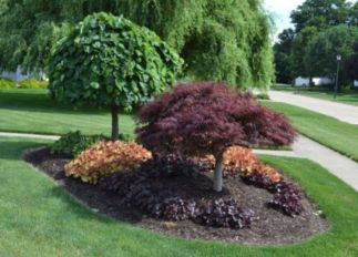 Impressive small front yard landscaping ideas 26