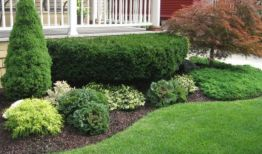 Impressive small front yard landscaping ideas 36
