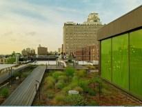 Modern urban gardening ideas 14