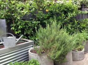 Modern urban gardening ideas 26