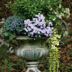 Impressive fall flowers to plant in your garden 30