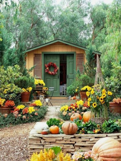 Impressive fall flowers to plant in your garden 39