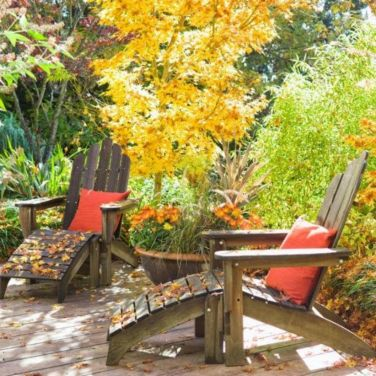 Impressive fall flowers to plant in your garden 44