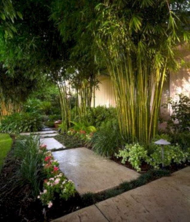 Lovely flowering tree ideas for your home yard 20