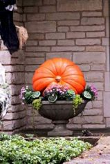 Pretty fall planters for easy outdoor fall decorations 37