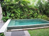 Minimalist small pool design with beautiful garden inside 48