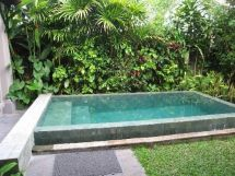 Minimalist small pool design with beautiful garden inside 48